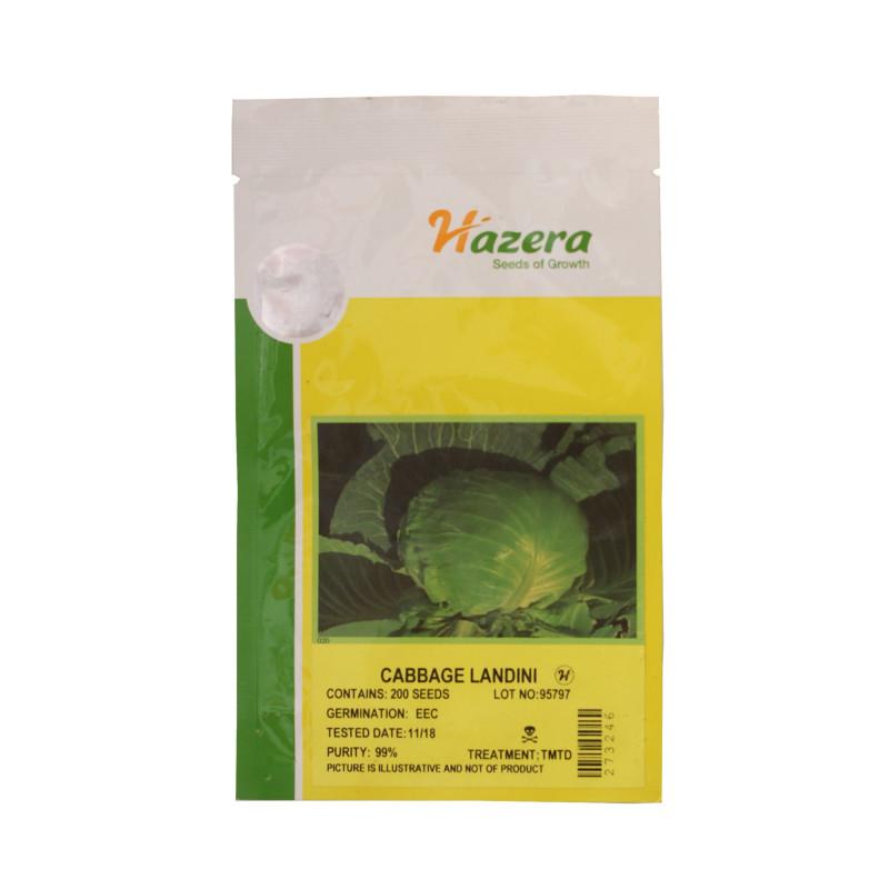 Cabbage Landini - 200 Seeds