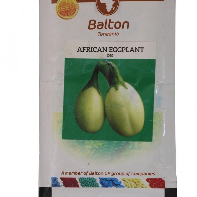 African Eggplant - 10g